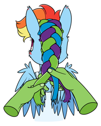 Size: 1046x1300   Tagged: safe, artist:dacaoo, character:rainbow dash, oc, oc:anon, species:pegasus, species:pony, g4, blushing, braiding, bust, disembodied hand, female, hand, mare, simple background, white background
