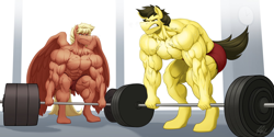 Size: 2048x1024 | Tagged: safe, artist:ponyanony, oc, oc only, oc:cross, oc:flex, species:anthro, species:earth pony, species:pegasus, species:pony, species:unguligrade anthro, g4, abs, barbell, biceps, bodybuilder, clock, clothing, deltoids, duo, earth pony oc, gritted teeth, gym, male, muscles, partial nudity, pecs, pegasus oc, shorts, stallion, sweat, thighs, thunder thighs, topless, triceps, vein, weight lifting, wings