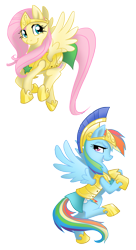 Size: 1500x2750   Tagged: safe, artist:equestria-prevails, character:fluttershy, character:rainbow dash, species:pegasus, species:pony, armor, duo, duo female, female, guardsmare, helmet, mare, royal guard armor, simple background, stars, transparent background, wings, wip