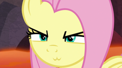 Size: 1920x1080 | Tagged: safe, edit, edited screencap, screencap, character:fluttershy, species:pony, episode:sweet and smoky, g4, my little pony: friendship is magic, :3, >:3, catface, female, solo