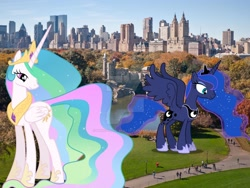 Size: 1600x1200 | Tagged: safe, artist:dashiesparkle, artist:pilot231, artist:princesslunayay, character:princess celestia, character:princess luna, species:alicorn, species:human, species:pony, central park, city, deviantart watermark, female, giant ponies in real life, giant pony, giantess, giantlestia, grass, highrise ponies, irl, irl human, macro, mega celestia, mega luna, new york, new york city, obtrusive watermark, photo, pond, ponies in real life, royal sisters, siblings, sisters, tree, united states, watermark