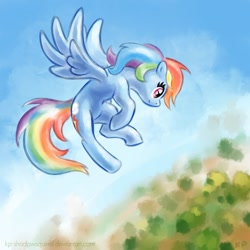 Size: 1000x1000   Tagged: safe, artist:kp-shadowsquirrel, character:rainbow dash, species:pegasus, species:pony, g4, female, flying, mare, sky, solo, spread wings, wings