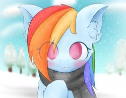 Size: 1800x1400 | Tagged: safe, artist:chocodamai, character:rainbow dash, species:pegasus, species:pony, g4, blushing, bust, clothing, cute, ear fluff, field, looking at you, raised hoof, scarf, snow, soft color, solo, winter