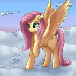 Size: 4096x4096 | Tagged: safe, artist:cocoasox, artist:csox, character:fluttershy, species:pegasus, species:pony, g4, cloud, cute, daaaaaaaaaaaw, female, mare, raised hoof, shyabetes, solo, spread wings, wings