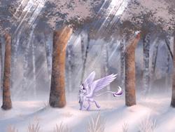 Size: 1280x960   Tagged: safe, artist:eyesorefortheblind, oc, oc:mystic mysteries, species:alicorn, species:pony, deviantart watermark, forest, horn, leonine tail, obtrusive watermark, snow, solo, tail, watermark, wings