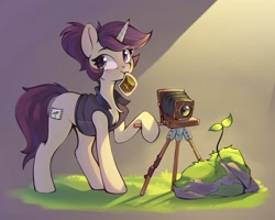 Size: 1815x1450 | Tagged: safe, artist:rexyseven, oc, oc only, species:pony, species:unicorn, camera, chest fluff, clothing, cutie mark, female, grass, jacket, looking sideways, mare, plant, ponytail, rock, solo, sunbeam, tail, tripod