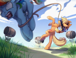 Size: 1024x778 | Tagged: safe, artist:mithriss, character:applejack, character:rainbow dash, species:earth pony, species:pegasus, species:pony, barrel, bipedal, blindfold, bondage, bound, duo, holding, lasso, mouth hold, open mouth, rope, screaming, silly, silly pony, target practice, this will end in pain, underhoof, who's a silly pony