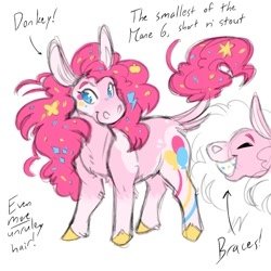 Size: 1200x1200 | Tagged: safe, artist:tinymochadeer, character:pinkie pie, species:donkey, alternate design, braces, redesign, small