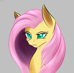 Size: 3035x3002 | Tagged: safe, artist:renarde-louve, character:fluttershy, species:pegasus, species:pony, g4, angry, bust, female, gray background, high res, mare, peeved, portrait, simple background, solo, three quarter view
