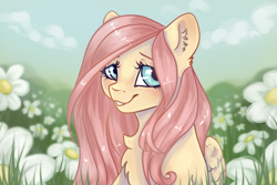 Size: 1440x960 | Tagged: safe, artist:fanaticpanda, character:fluttershy, species:pegasus, species:pony, g4, bust, chest fluff, cute, ear fluff, female, flower, flower field, folded wings, grass, looking sideways, mare, shyabetes, smiling, solo, three quarter view, wings