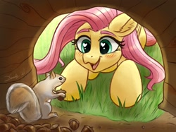 Size: 1890x1417   Tagged: safe, artist:dandy, character:fluttershy, species:pegasus, species:pony, newbie artist training grounds, g4, acorn, atg 2021, blushing, burrow, cute, female, grass, heart eyes, mare, open mouth, shyabetes, smiling, solo, squirrel, wingding eyes