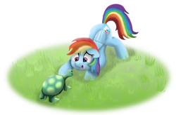 Size: 1280x838 | Tagged: safe, artist:pony-thunder, character:rainbow dash, character:tank, species:pegasus, species:pony, g4, cute, dashabetes, face down ass up, female, floppy ears, grass, looking at each other, mare, open mouth, open smile, simple background, smiling, solo, tortoise, transparent background